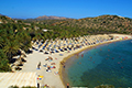 Crete - Vai Beach and Palm Forest